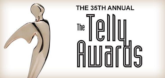 2014 Telly Awards Winner
